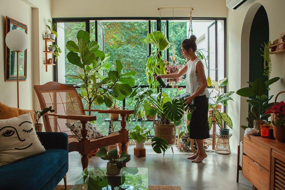 Plantonic - Lifestyle (2)